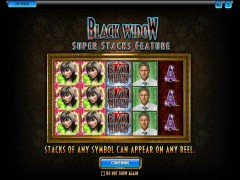 Black Widow - IGT Interactive